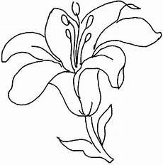 simbolos naturales del zulia para colorear flores para colorear f 225 ciles dificiles y hermosas colorear im 225 genes