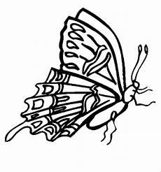 Malvorlagen Insekten Pdf Insekten 00238 Gratis Malvorlage In Insekten Tiere Ausmalen