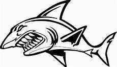 Mewarnai Gambar Sketsa Ikan Hiu Terbaru Kataucap