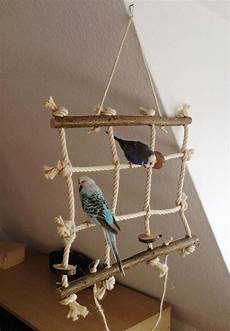 Wellensittich Spielzeug Selber Bauen - 547 best bird parrot diy toys play stands and aviaries