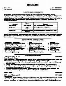 sales executive resume sle pdf free sles