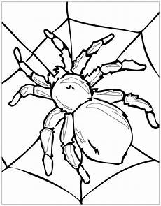 beautiful insects coloring page to print and color from