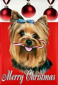 yorkie merry christmas yorkie yorkie yorkie dogs
