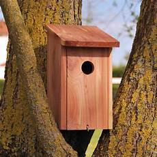 redirecting to fr oiseaux exterieur oiseaux des jardins