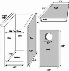 blue jay bird house plans lovely blue jay bird house plans new home plans design