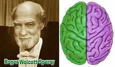 Roger W Sperry Sang Penemu Otak Kiri Dan Otak Kanan