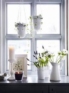Die Besten 25 Fensterbank Deko Ideen Auf