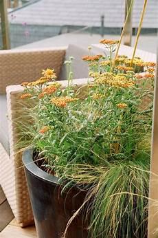 pflanzen für die dachterrasse dachterrasse gestalten tipps und 42 tolle ideen haus garten terrassen zenideen
