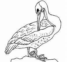 simbolos naturales del zulia para colorear dibujos para colorear del zulia imagui
