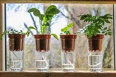 Balkonpflanzen Im Urlaub Bew 228 Ssern 187 Die Besten Ideen
