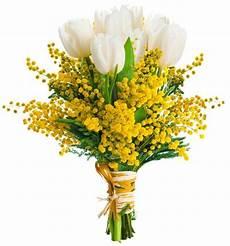fiori per festa della donna con mimosa a domicilio per la festa della donna