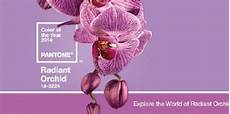 pantone color of the year 2014 radiant orchid best