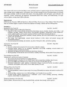 lalsee s resume sales analyst