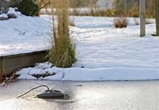 teich winterfest machen mit den tipps obi wird der gartenteich garantiert