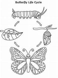 Malvorlagen Cycle Of Cycle Butterfly Worksheet Butterfly Cycle