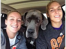 elena delle donne and husband
