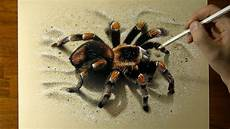 Drawing 3d Spider How To Draw 3d