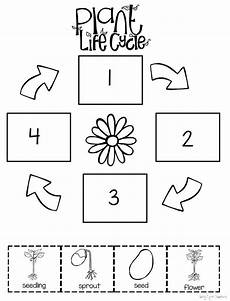 worksheets on plants cycle 13606 all about plants deti učenie a kvety