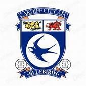 Barclays Premier League Logos