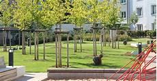 biedenbacher gmbh garten und landschaftsbau aus
