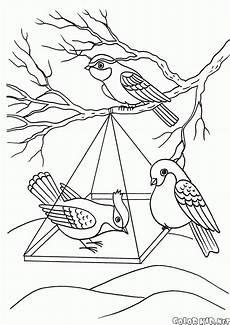 Winter Malvorlagen Instagram Malvorlagen Vogel Im Winter