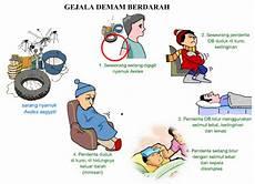 Keperawatan Asuhan Keperawatan Dengue Haemoragic