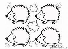 hedgehog coloring pages for kindergarten preschool crafts