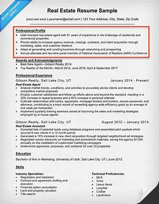 resume profile exles writing guide resume companion