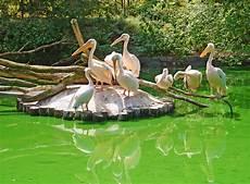 unser rostocker zoo