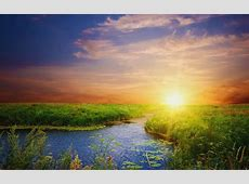 Sunshine Wallpapers HD Download