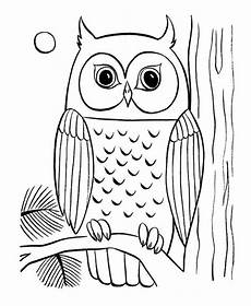 Kostenlose Malvorlagen Eule Coloring Pages Of Owls To Print Owl Coloring Page 29