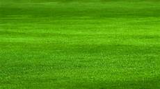 Rasenpflege Rasen Vertikutieren D 252 Ngen Und Kalken