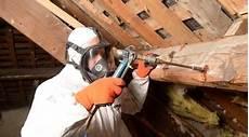traitement des bois de charpente traitement de charpente bois pr 233 ventif et curatif en