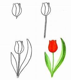 Die Besten 25 Malen Lernen Ideen Auf Blumen
