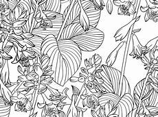 Ausmalbilder Blumen A4 Coloriage Pour Adultes Motifs Florals