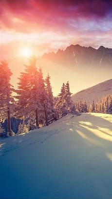 iphone 8 wallpaper winter winter sun iphone wallpapers mobile9 iphone 8