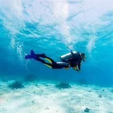 playa del carmen dive shops diversity diving scuba
