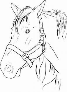 ausmalbilder pferde lustig pferde zum ausdrucken mit bildern ausmalbilder pferde