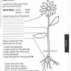 science plants worksheets for 3rd grade 13627 fresh word problem lesson plans 1st grade worksheets for all and worksheets