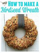 Make A Bird Seed Wreath Wreaths Are Easy To