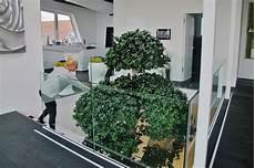 Atrium Lichthof Pflanzen Begr 252 Nung Innen Au 223 En