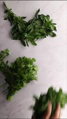 conserver herbes aromatiques comment conserver les herbes aromatiques vid 233 o vid 233 o