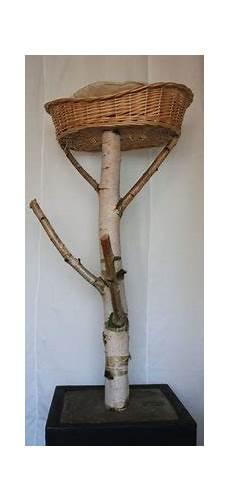 naturholz kratzbaum selber bauen barfberatung fiedler