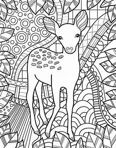 coloring pages of animals 17199 zendoodle coloring baby animals jeanette wummel macmillan