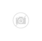 максбет казино играть на деньги официальный сайт