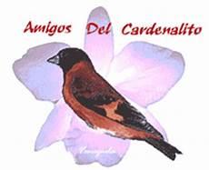 el cardenalito simbolo del estado lara el cardenalito