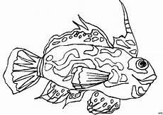 fisch gemustert ausmalbild malvorlage tiere