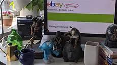 Bildplus Inhalt 10 Jahre Ebay Kleinanzeigen Mit