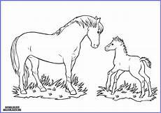 ausmalbilder pferde mit fohlen ausmalbilder zum
