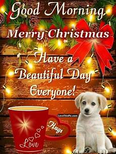 good morning merry christmas have a beautiful day everyone pictures photos and images for